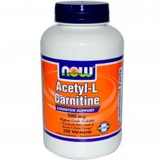 Разница между l-carnitine и acetyl-l-carnitine